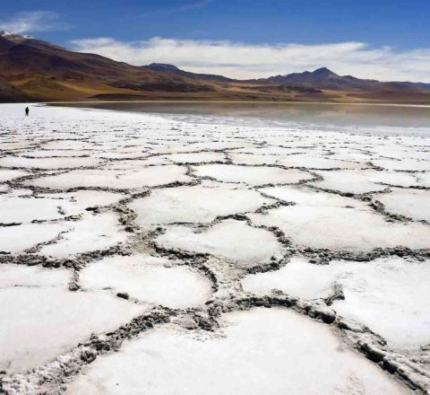 chili-atacama-desert-sel-oasis