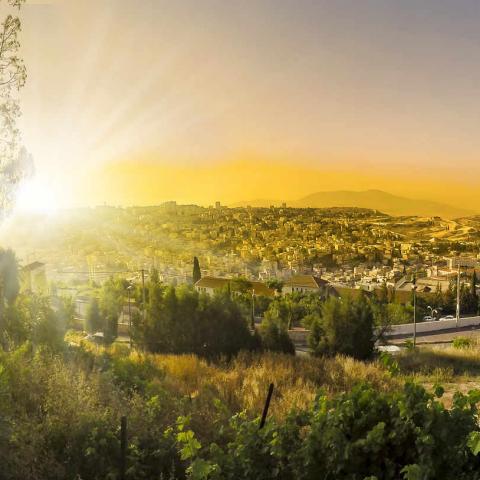 Nazareth Israël Oasis