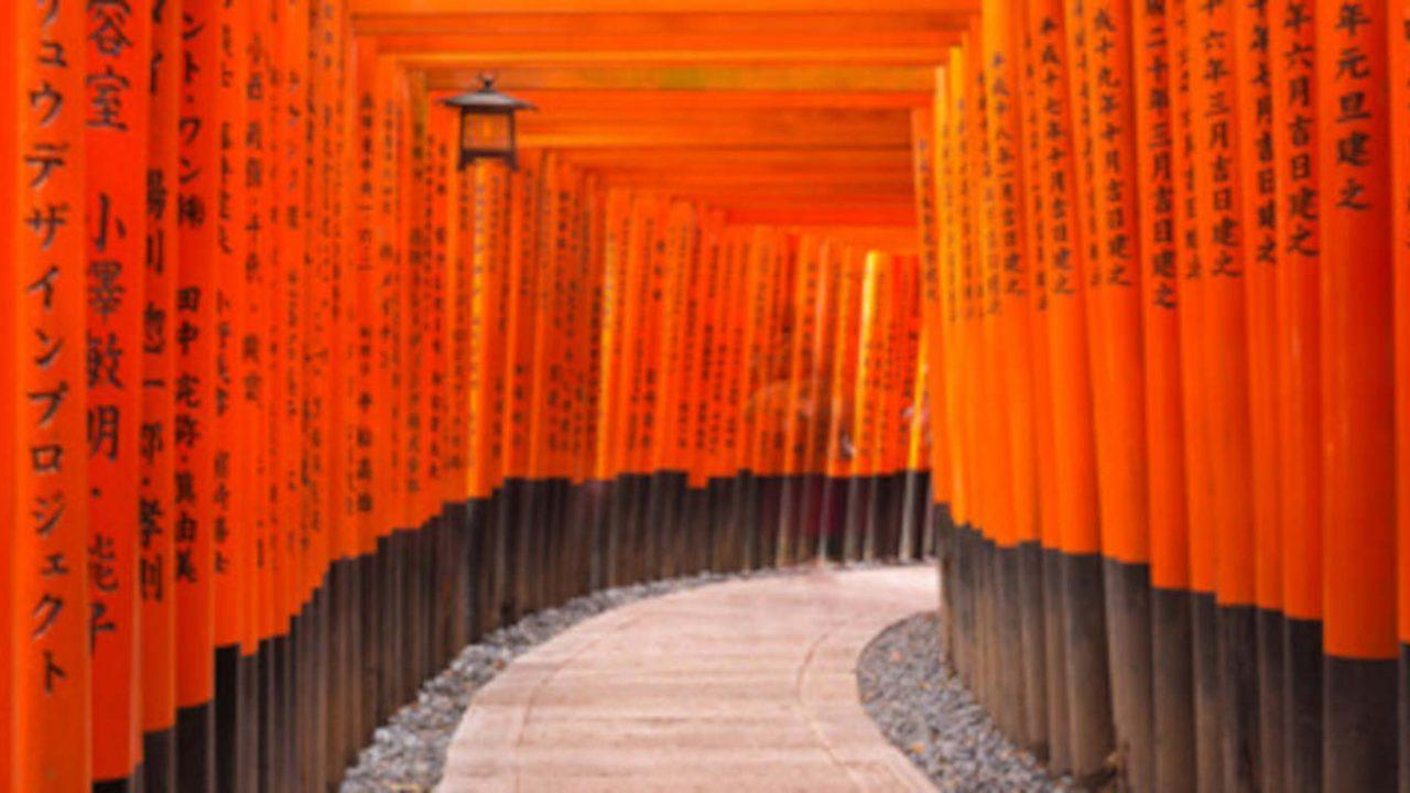 Chemin d'initiation torii Japon Oasis