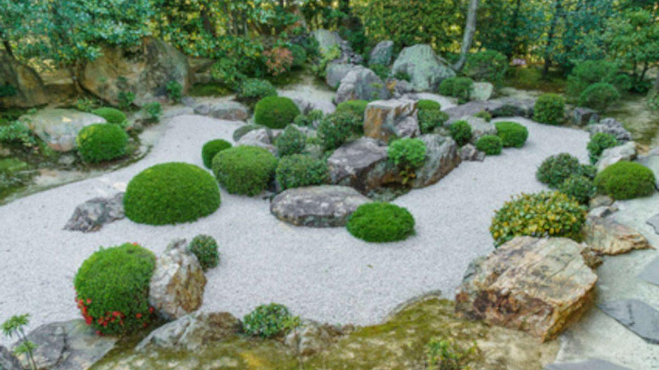 Méditation zazen Japon Oasis