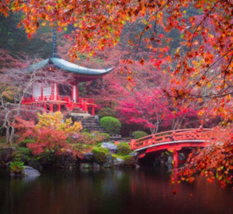 Temple bouddhiste daigo ji japon Oasis