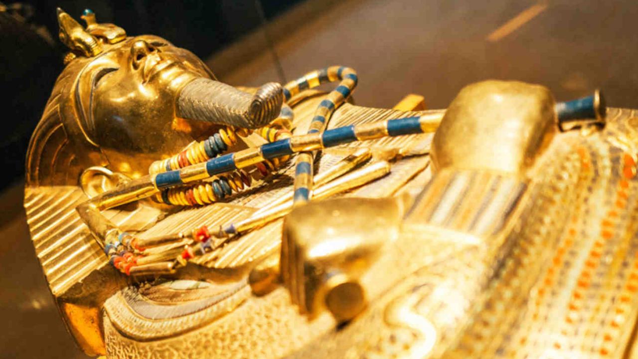 Découverte pharaon musée Egypte Oasis