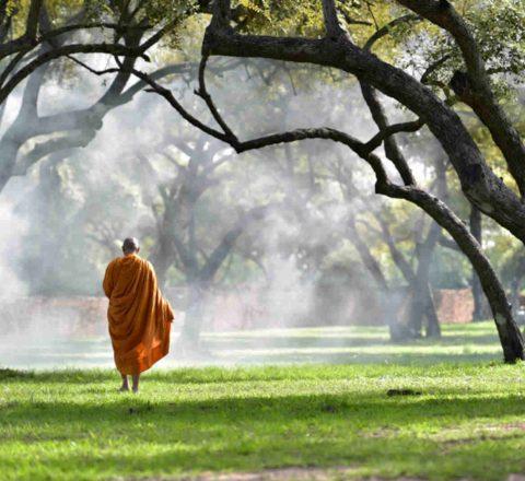 Enseignement bouddhiste Cambodge Oasis