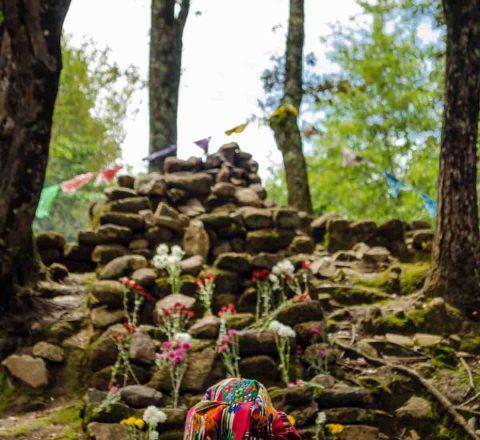 Iximche, centre cérémoniel maya, Guatemala, Oasis