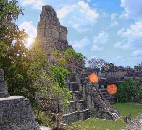 Tikal, Guatemala, Oasis