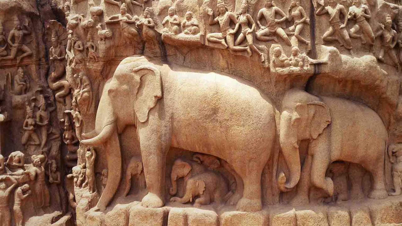 Mahabalipuram, Inde, Oasis