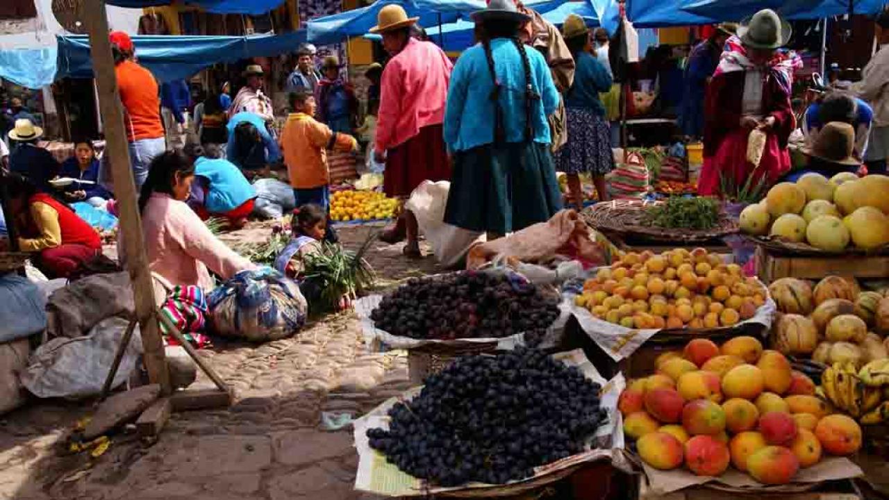Marché de Pisac, Pérou, Oasis