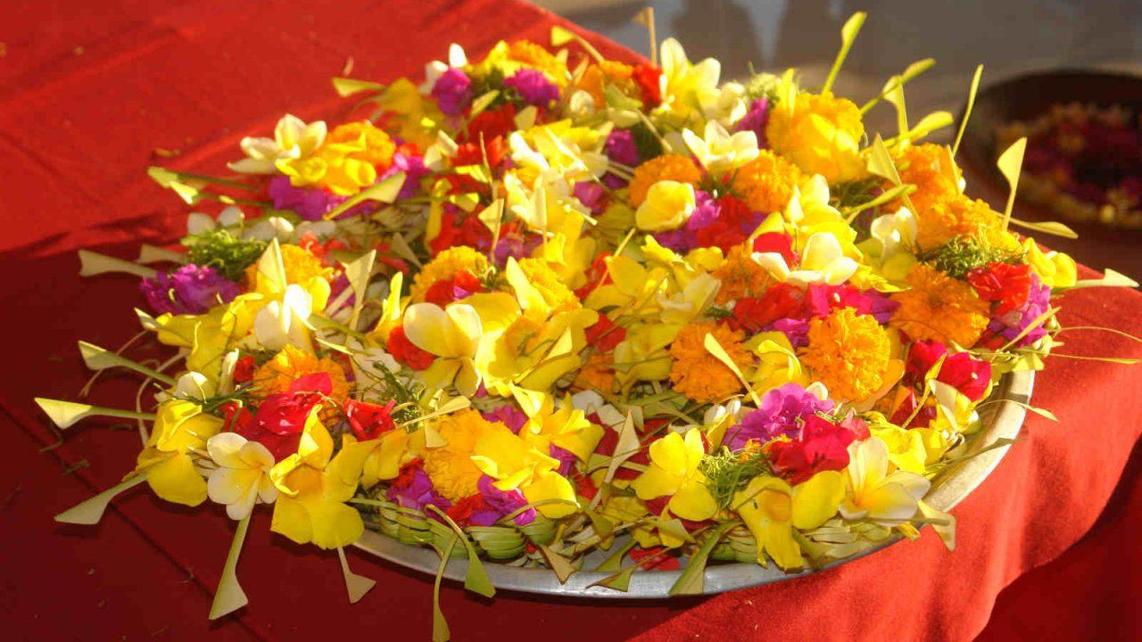 Offrandes à Bali Oasis
