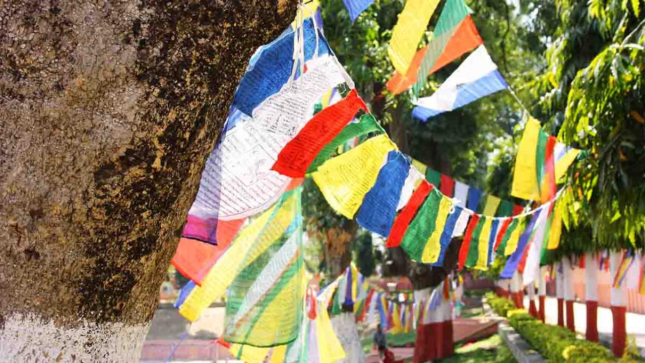Drapeaux de prière à Bodhgaya, Inde, Oasis