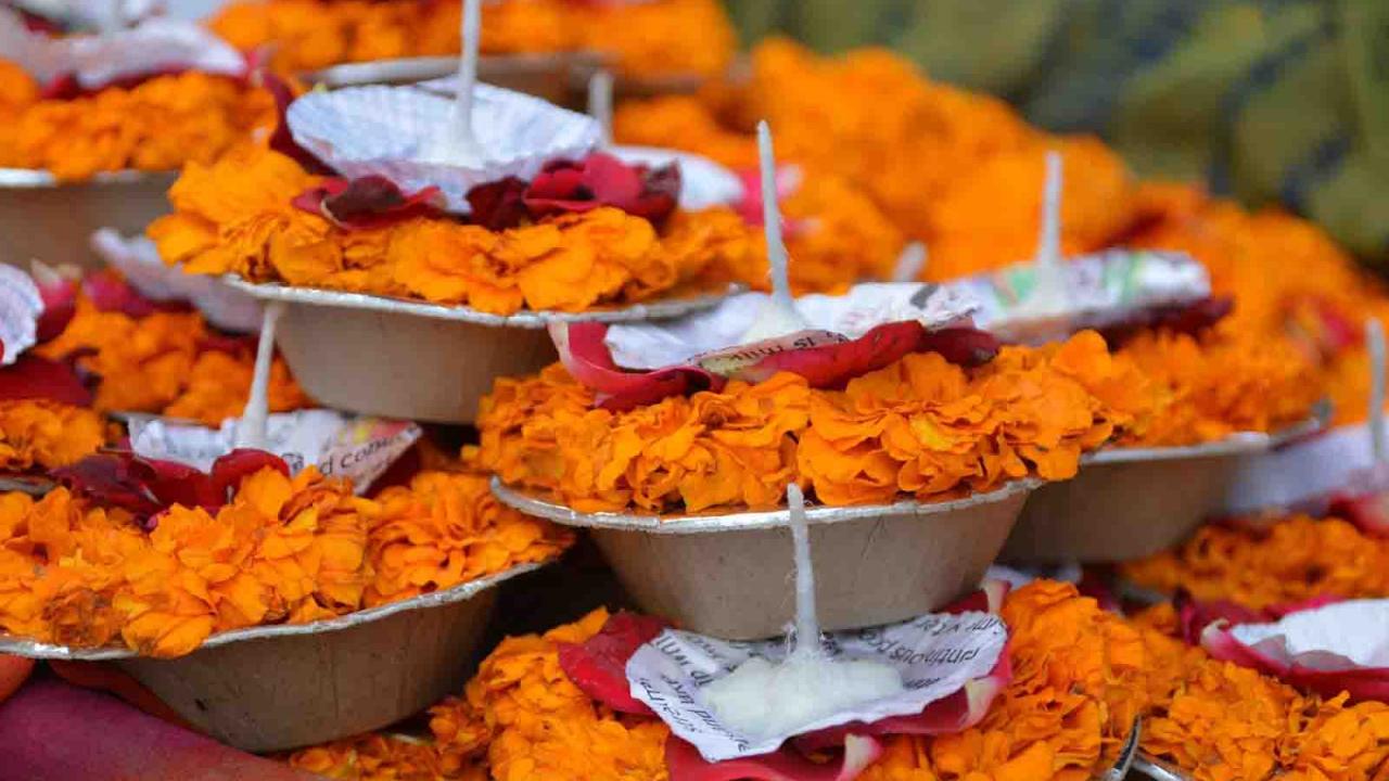 Offrandes diya, Inde, Oasis