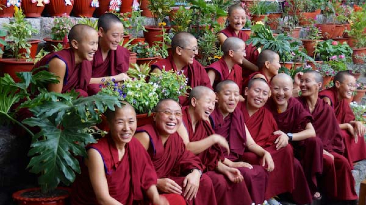 Nonnes de Tingmosgang, Inde Ladakh, Oasis
