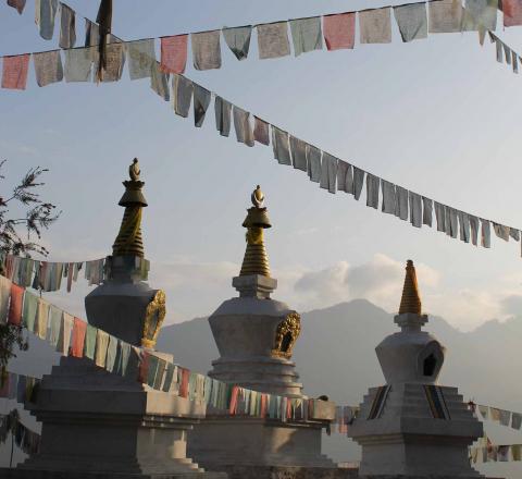 Voyage spirituel Bhoutan Oasis