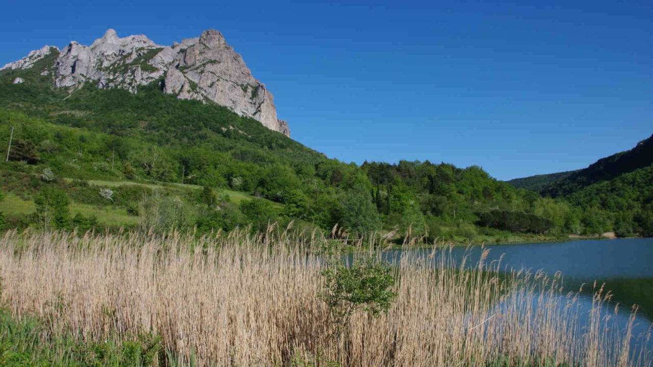 Mont Bugarach en France, Oasis