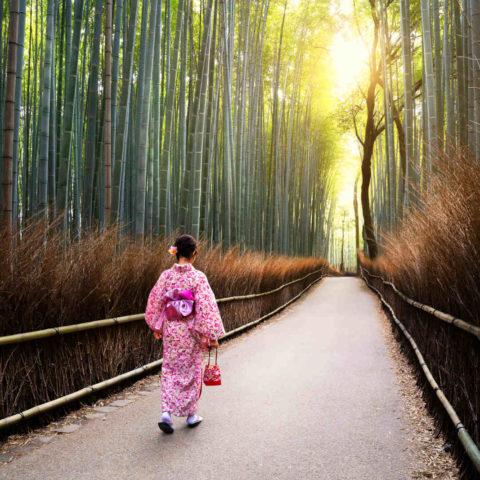 Cheminement spirituel Japon Oasis